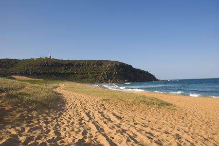 headland: Palm Beach with the headland at Barrenjoey in Sydney. Historic Barrenjoey Lighthouse in the distance. Sand dune planting restoring the local environment in foreground.  A perfect blue sky for copyspace.A lighthouse upon a cliff with a perfect blue sky for