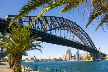 magnificent: Sydney Harbour ( harbor ) with the Bridge, Opera House and Palm trees in foreground on a perfect blue sky day