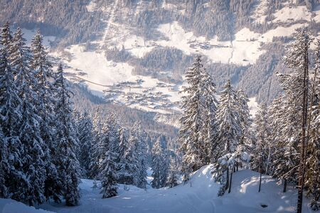 Mayrhofen, Austria Zillertal Valley on a background of snowy fir trees, view from the mountain