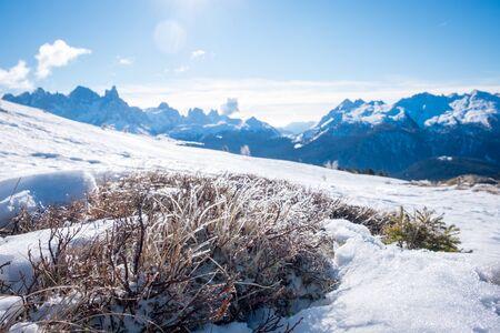 Sunny winter landscape with frozen grass at Ski Area in Dolomites, Italy - Alpe Lusia. Ski resort in val di Fassa near Moena. Winter mountains in the morning.