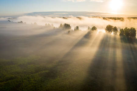 Early morning landscape. Foggy river. River valley in the morning fog at sunrise. View from above. Rays of the sun breaking through the fog in over the trees