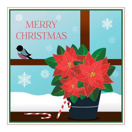 Christmas greeting card in flat style. Vivid illustration with striped candy canes and a poinsettia plant. A window with a view of a frosty holiday morning with beautiful snowflakes and bullfinches. Poster for greetings, parties, sales, or web ads. Chirstmas Simple Typography Greeting Poster Ilustrace