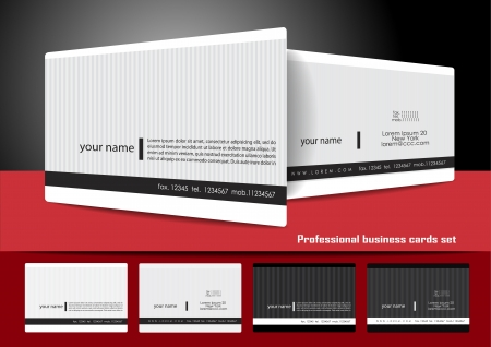 profesional: Professional business cards set Illustration