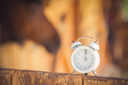 Close up of alarm clock on the horse farm. Lunchtime.