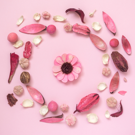 Flowers, leaves and plant parts on pastel pink background minimal creative flat lay concept. Reklamní fotografie