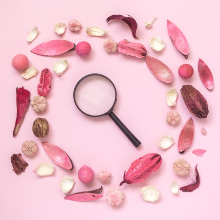 Dried flowers, leaves and plant parts with magnifying glass on pastel rose background minimal creative flat lay concept. Reklamní fotografie