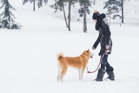 Young female walking on snow wit her japanese akita pet.