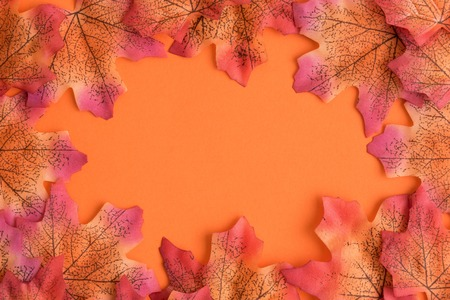 Autumn composition. Yellow leaves background minimal creative concept. Space for copy.