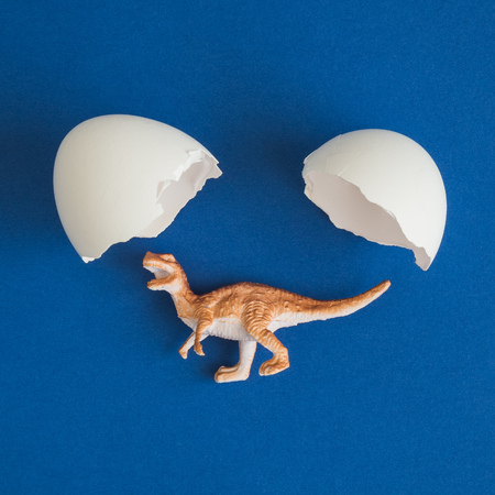 Flat lay of dinosaur coming out of white egg minimal creative concept.