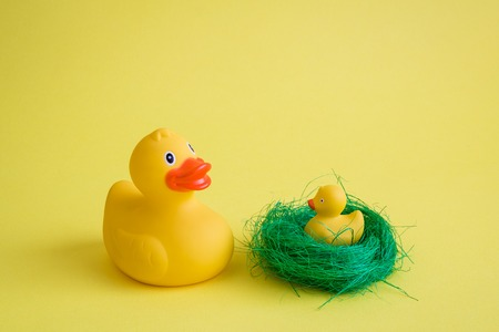 Rubber duck with duckling in nest minimal creative concept.