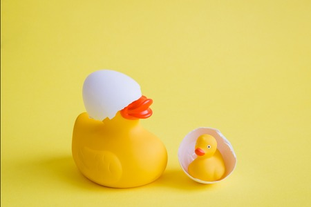Rubber duck with eggshell on its head and duckling minimal parenting creative concept. Foto de archivo - 119040132