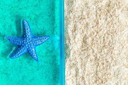 Sea star in ocean and sandy beach minimal creative concept. 스톡 콘텐츠