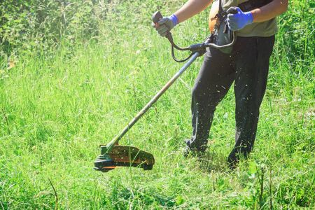 Man Mowing the Grass by using gasoline lawn trimmer