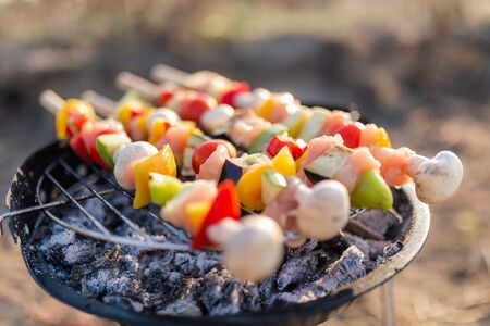 Meat and colorful vegetables barbecue. Picnic or camping food concept.