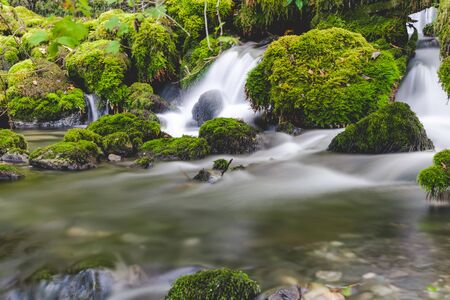 Forest brook mountain stream between mossy rocks Stock fotó