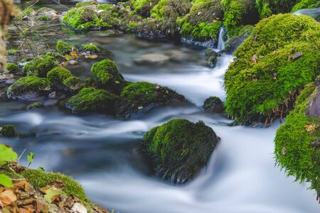 Close up of forest brook. Cascade falls over mossy rocks. Long exposure.