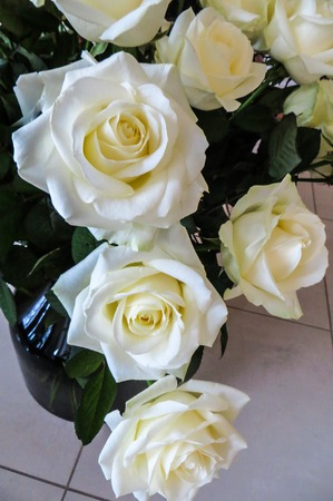 Beautiful white roses in a huge bouquet. Stock fotó