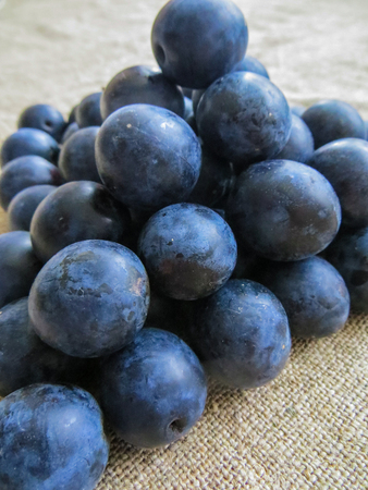 Fresh, dark blue plums scattered on the table. 版權商用圖片