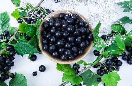 Berries of a tasty, large black currant on a table in a small plate Imagens