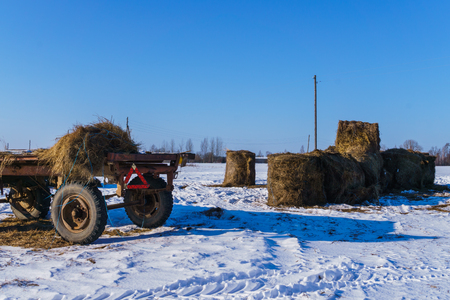 An old cart and the remains of hay rolls on a field in winter