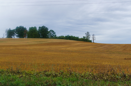 Endless fields in the village after harvest