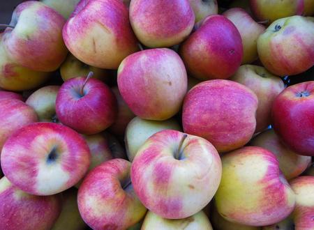 Manzanas rojas orgánicas frescas en una gran caja de madera, cerrar, fondo Foto de archivo