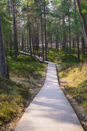Boardwalk through the dunes to the coast of the Gulf of Riga