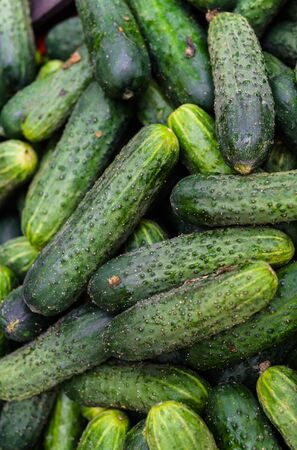 Fresh, green cucumbers in a wooden box in the store.