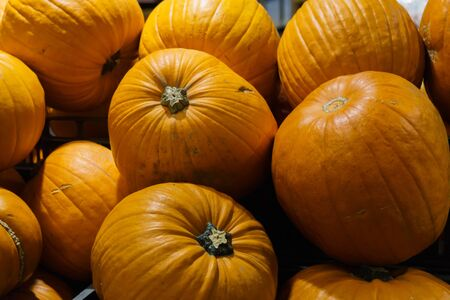 Group of beautiful orange pumpkins close-up in a crate in a market