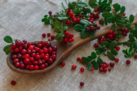 Berries of red lingonberry in a wooden spoon, along with twigs, on a table