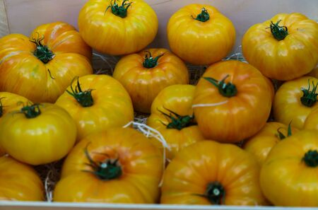 Yellow farm eco tomatoes in a wooden box