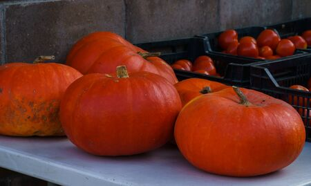 Different varieties of pumpkins at the farmers market