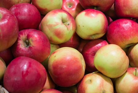 Fresh, ripe red apples gathered in the garden