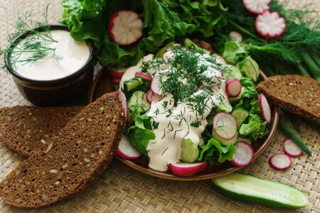 Cooked salad of cucumber, radish and herbs, seasoned with sour cream