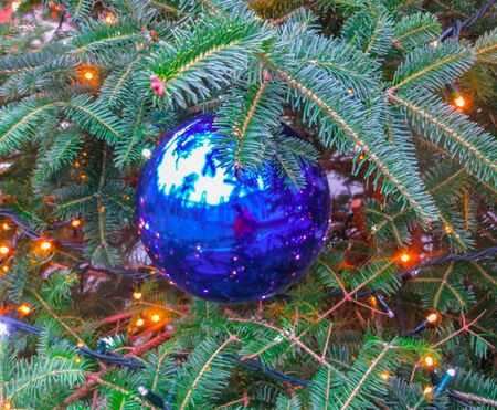 Big blu ball on a Christmas tree in the park