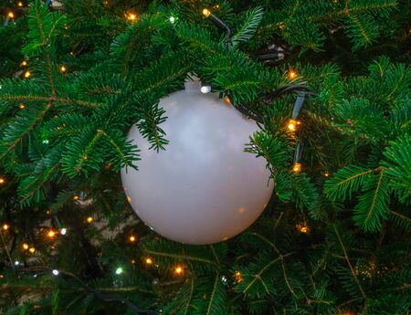 Big white ball on a Christmas tree in the park