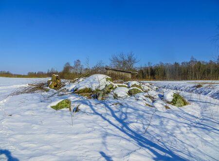 Schneebedeckte Felder in Lettland, im Winter Standard-Bild