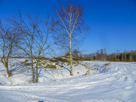Snow-covered fields in in Latvia, in winter