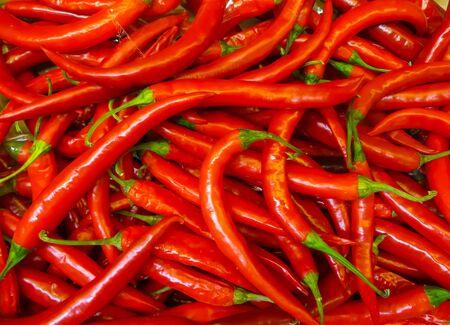 A hot, hot red chili pepper in a box