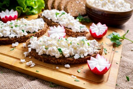 Homemade toast with Cottage Cheese and parsley, radish