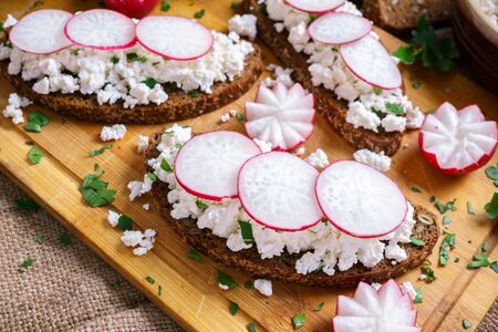 Homemade toast with cottage cheese, garnished with slices of radish and herbs Stock Photo