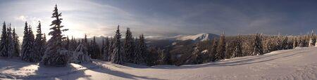 screen: Winter landscape wide screen