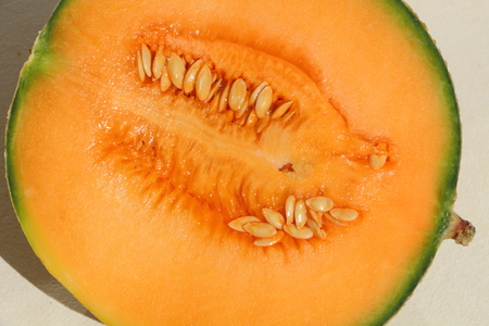 Close-up of half melon with its pips