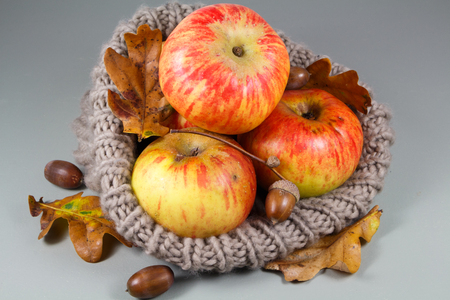Apples, acorn and dead leaves in a beanie after harvesting in an orchard during autumn