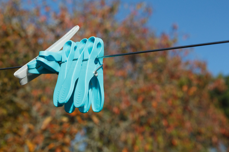 Clothes pins on a washing line in a garden