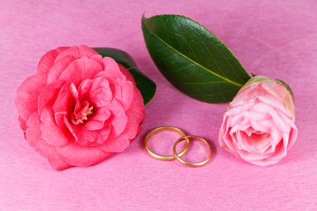 Two wedding rings and pink camellia flowers for Valentine's Day Imagens