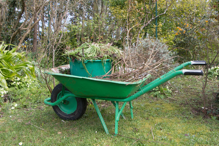 Wheelbarrow and bucket full of garden waste after cleaning a garden at the beginning of spring