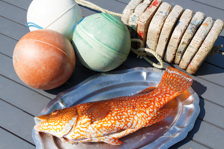Orange ballan wrasse on a pewter dish after fishing in Brittany and buoys Stock Photo