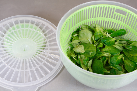 Lambs lettuce after spinning in a salad spinner Zdjęcie Seryjne