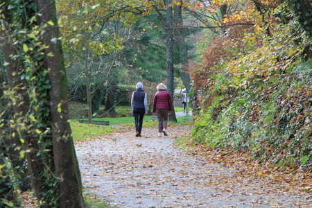 Senior women going for a walk in a park during autumn